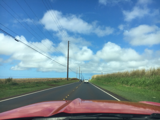 Road trip towards North Shore